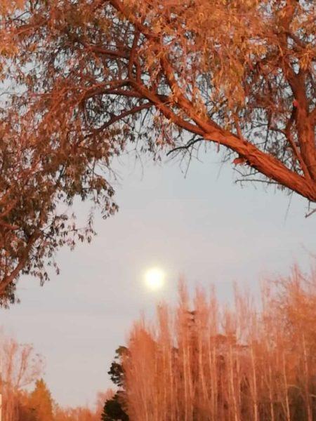 La belle                                                           lumière de                                                           l'automne