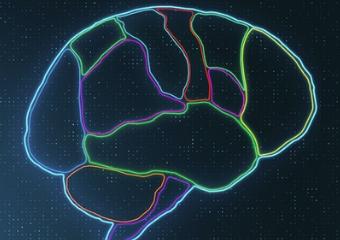 Brain Breaks activity