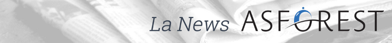 La News Asforest