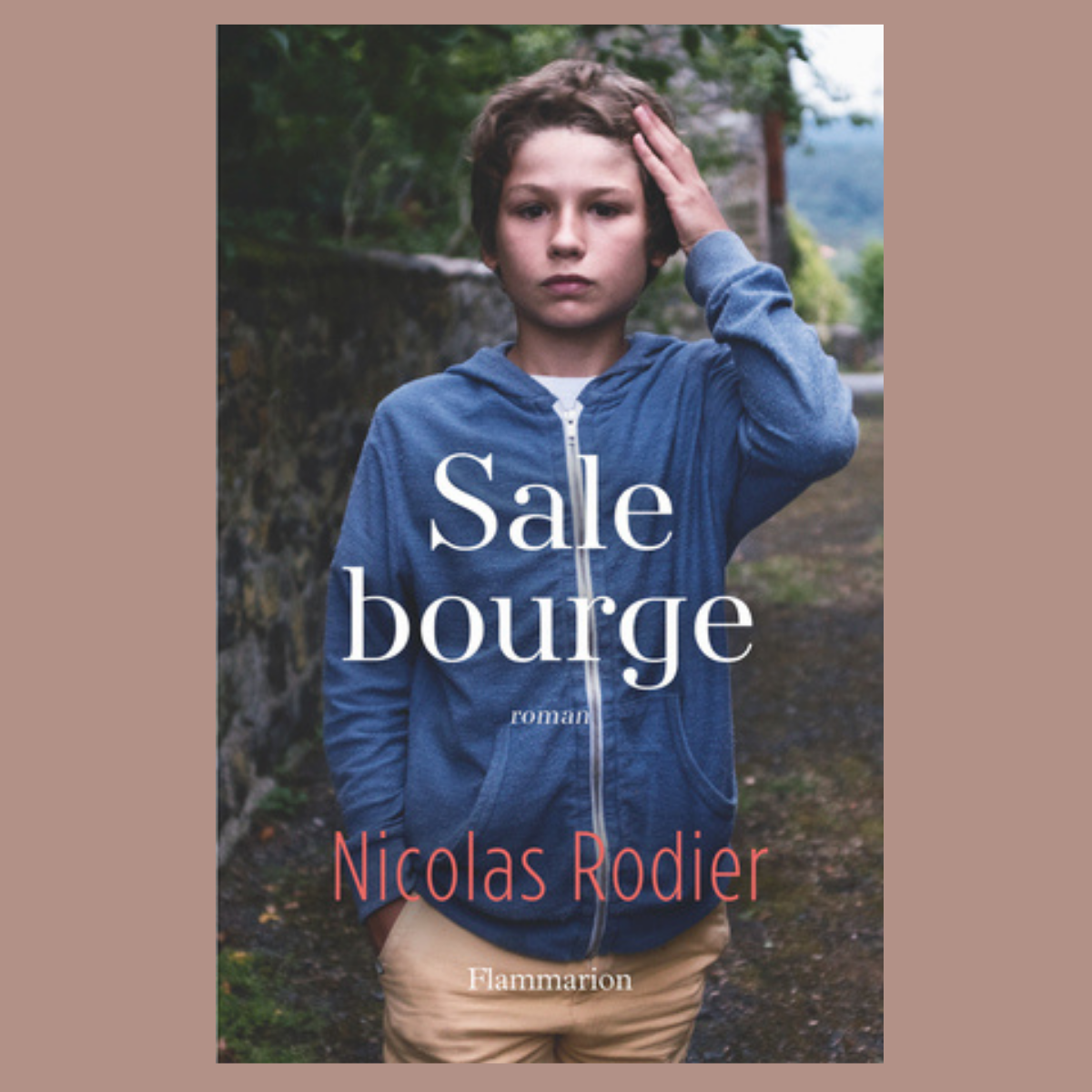 Sale Bourge - Nicolas Rodier (Flammarion)