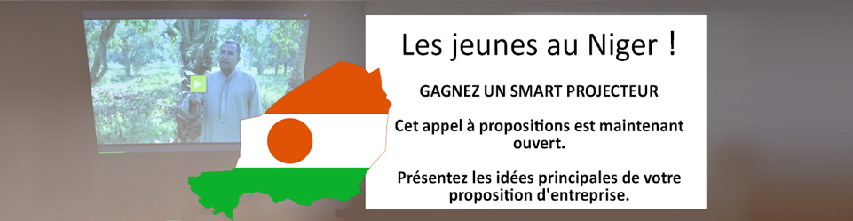 Call for young entrepreneurs in Niger